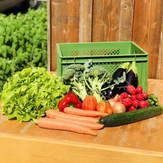 Abo Gemüse groß